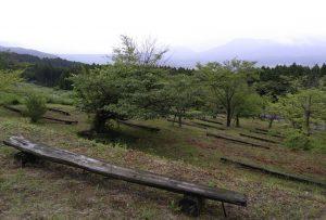 大観の森草刈り⑧